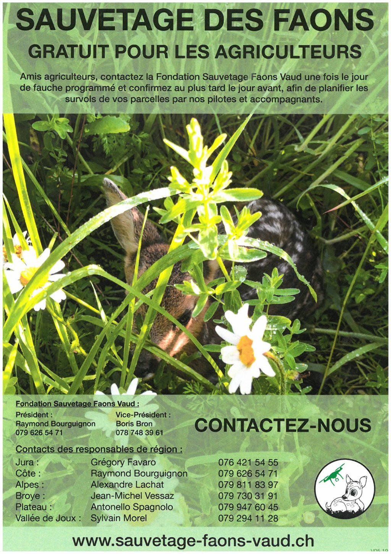 Sauvetage des Faons_gratuit_agriculteurs.jpg